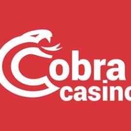 Cobra Casino Erfahrungen mit Auszahlung, Bonus & Co.